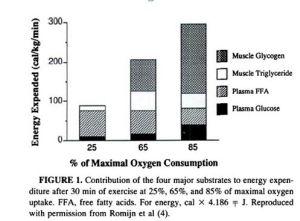 Contributo e utilizzo dei substrati durante esercizio fisico