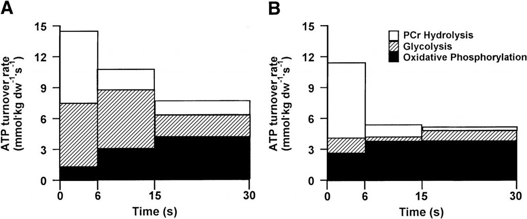 ATP turnover rates from PCr hydrolysis, glycolysis, and oxidative phosphorylation during each time interval in the first (A) and third (B) bouts of maximal isokinetic cycling.