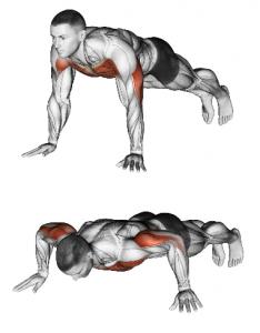 piegamenti-sulla-braccia-push-up